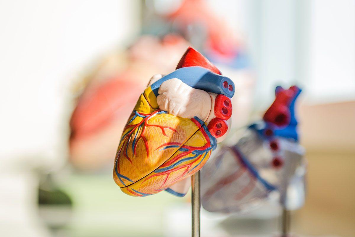 A doença coronária: causas, sintomas e tratamentos